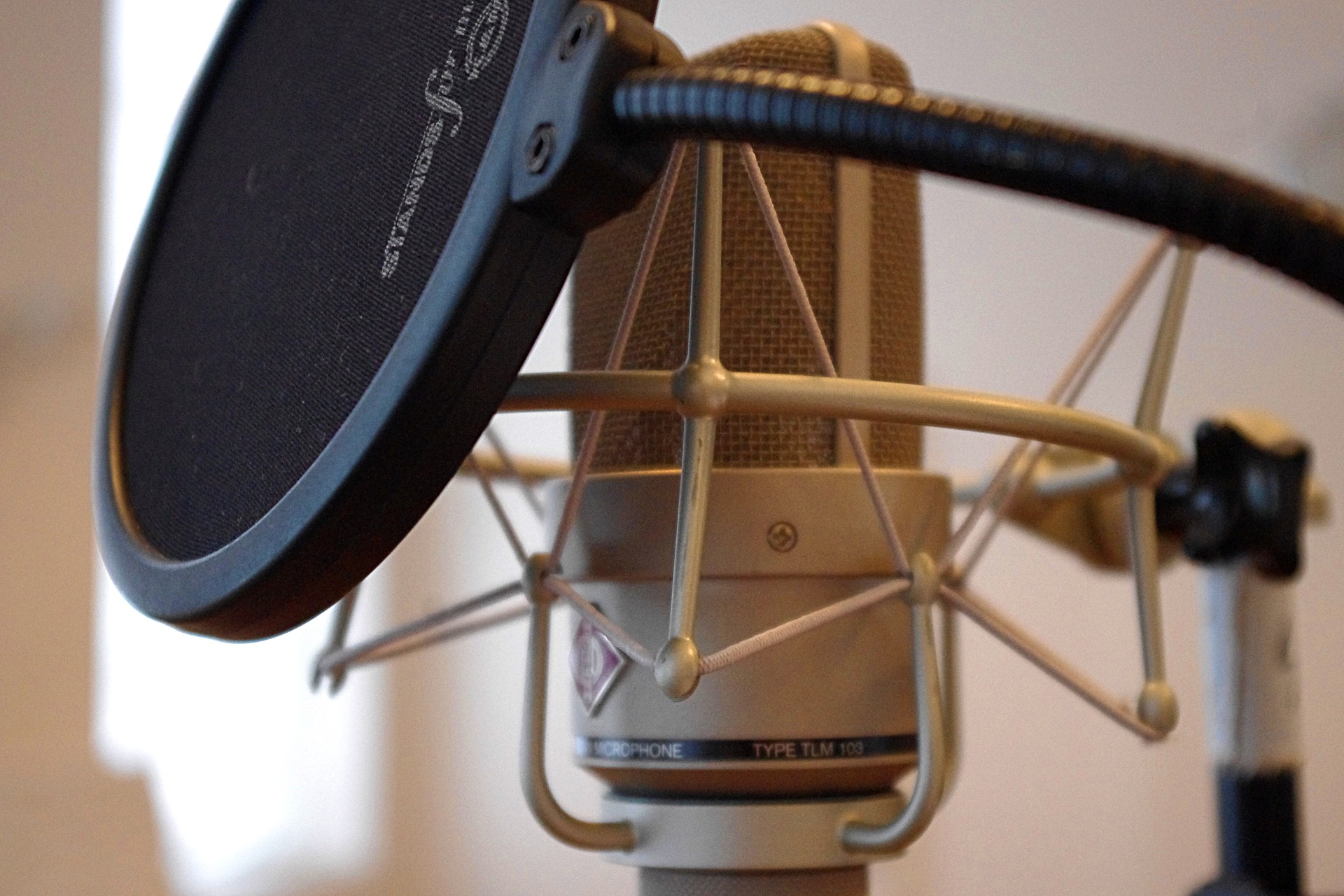 cheap studio tools pop filter