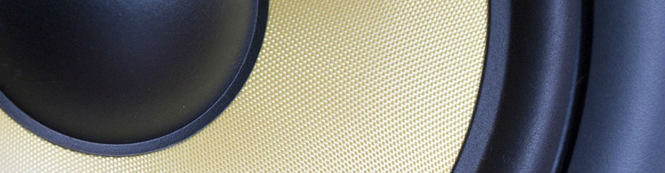 Studio monitor speaker cone