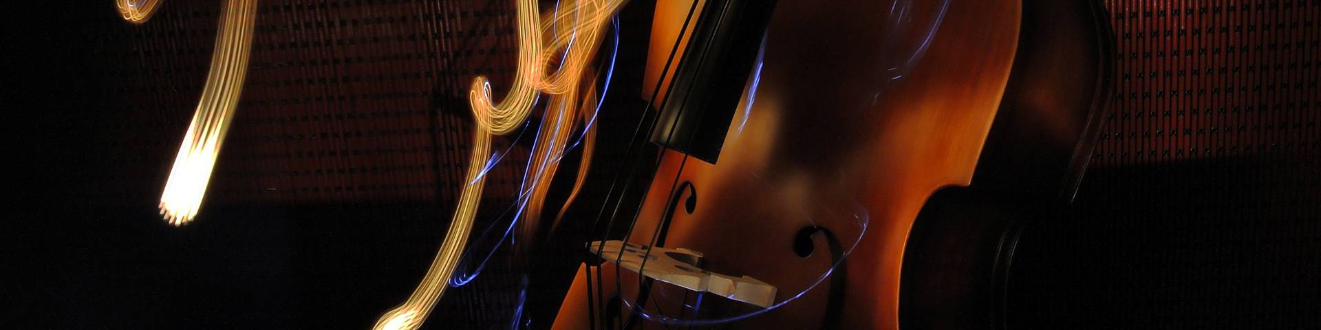 A upright bass guitar